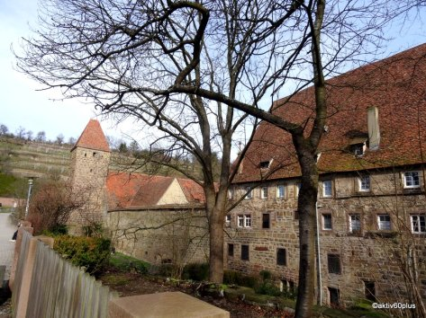 Im Hintergrund die Weinberge des Klosters