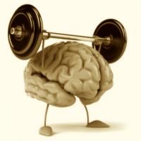 Gehirn-Hantel (1)
