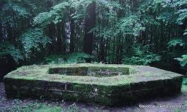 Fragmente eines Römerturms im Wald