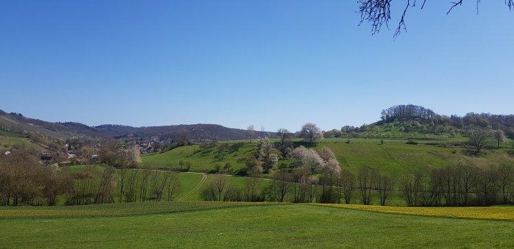 """Oben auf dem """"Berg"""" liegt auf ca. 300 Meter der kleine Ort Herrenhölzle. Von dort aus starten verschiedene Rundwanderungen"""